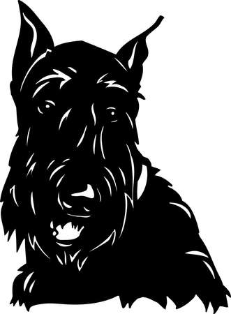 Scottish Terrier Stock Vector - 12945154