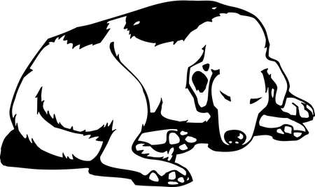 sleeping animals: Sleeping Dog Illustration