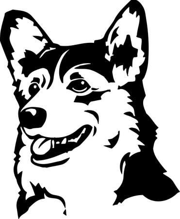 corgi: Welsh Corgi Illustration