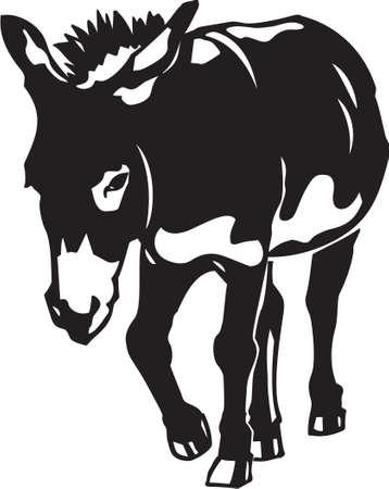 Donkey 일러스트