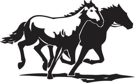 domestic horses: Horses