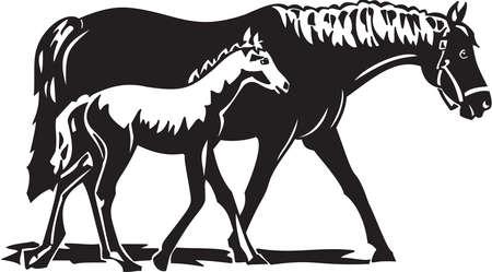 merrie: Paarden Stock Illustratie