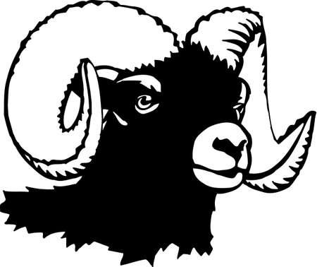 carnero: Carnero Vectores