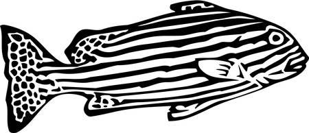 zebrafish: Zebrafish