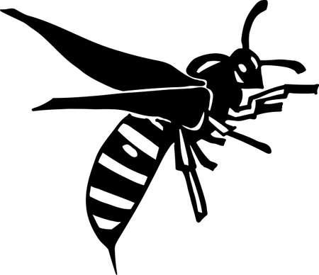 sting: Wasp