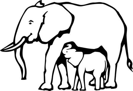 mother and baby: Elephants