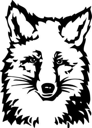 Fox Stock Vector - 13065729