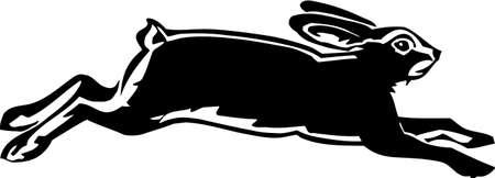 hare: Hare