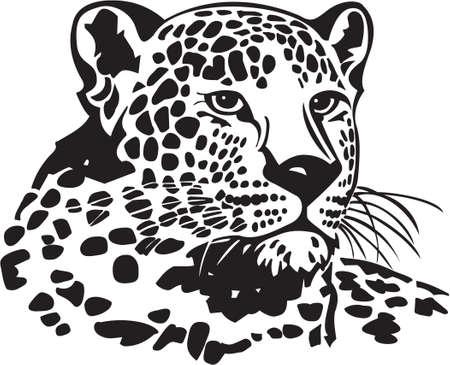 Leopardo Ilustración de vector