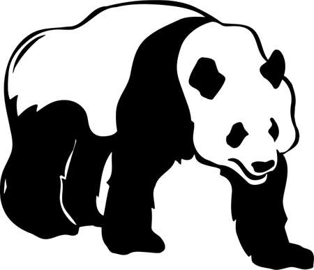 giant panda: Giant Panda Bear Illustration