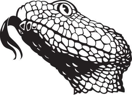 Serpente a sonagli Vettoriali