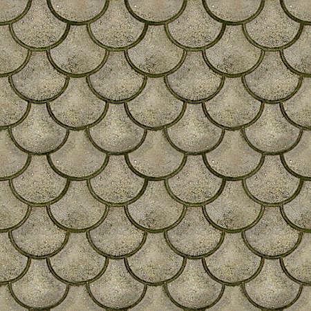 adoquines: Adoquines Azulejos de textura perfecta