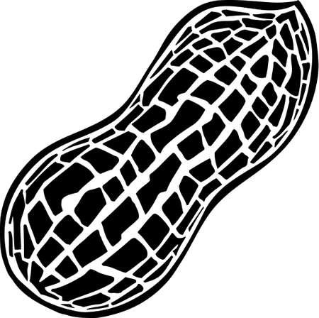 erdnuss: Erdnuss