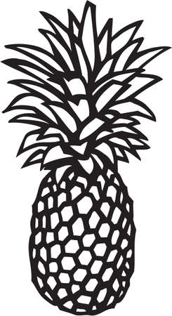 Pineapple Stock Vector - 13351944