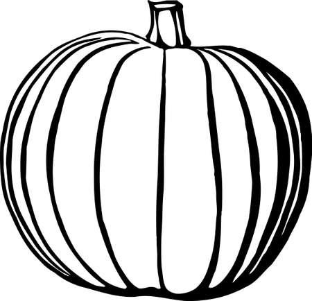 Pumpkin Stock Vector - 13352071