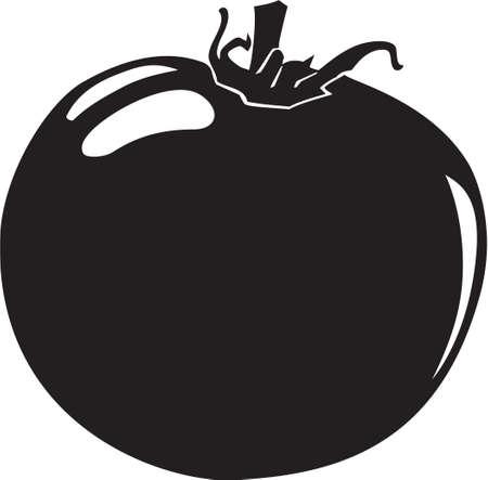Tomato Stock Vector - 13323466