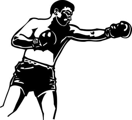 jab: Boxer Vinyl Ready  Illustration
