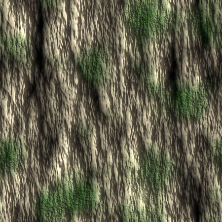 Tree Bark with Moss Seamless Texture Tile Stock Photo - 14024919