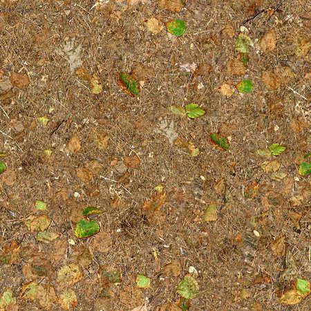 terreno: Terra di copertura Seamless Texture Tile Archivio Fotografico