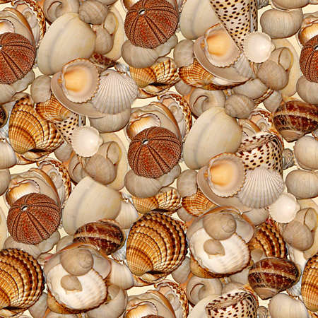 Seashells Seamless Texture Tile