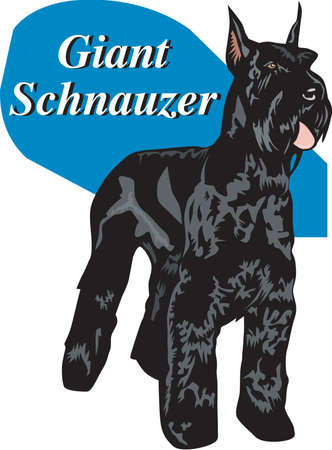 Giant Schnauzer Illustration Stock Illustratie