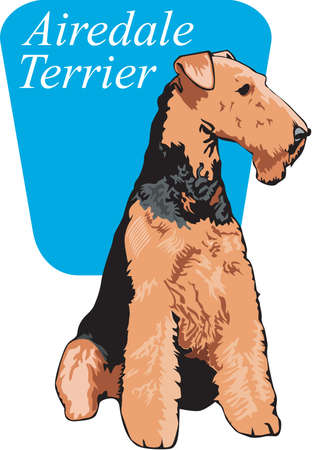 Airedale Terrier Illustration Illustration