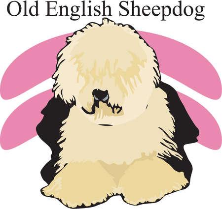 Old English Sheepdog Illustration