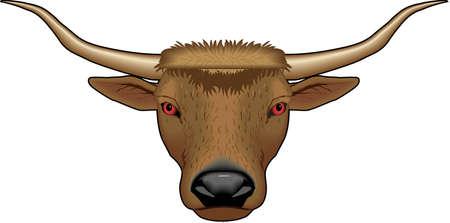 Longhorn の牛の図