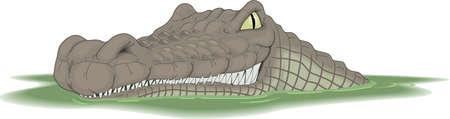 Crocodile Cartoon Иллюстрация