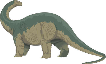 Brontosaurus Illustration