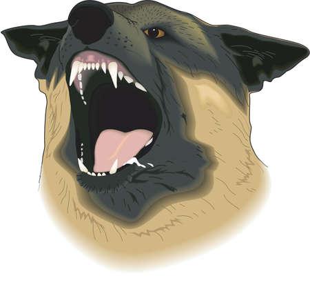 K-9 Police Dog Illustration