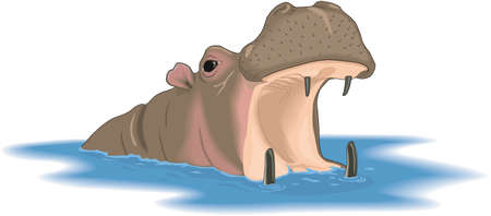 Cartoon drawing of Hippopotamus head, opened mouth