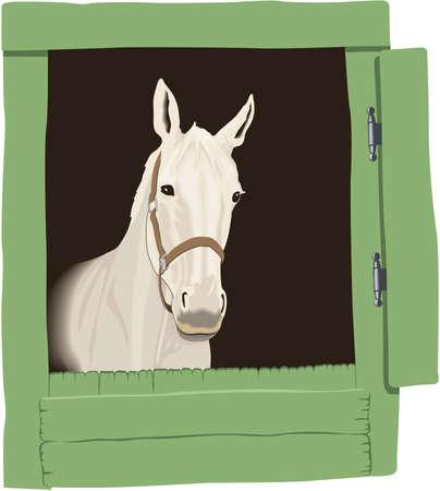 Paard in Stabiele Illustratie