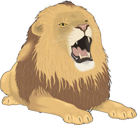 Lion Roaring Illustration