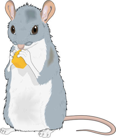 マウス イラスト