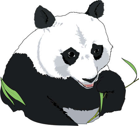 Giant Panda Illustration 向量圖像