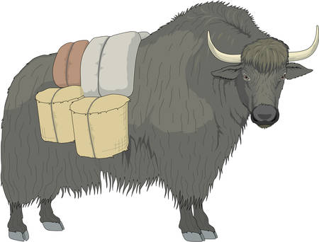 Yak Illustration