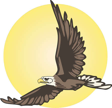 Eagle Flying with Sun Illustration