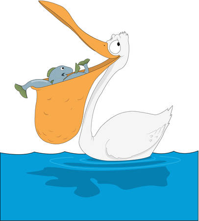 Pelican cartoon illustration.