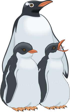 Gentoo penguin family illustration. Illustration