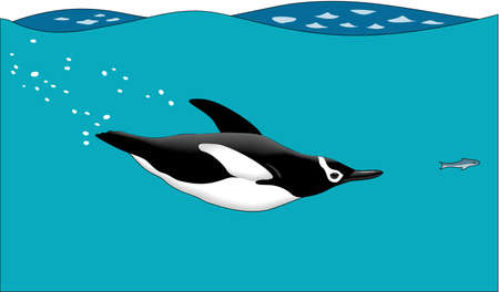 Penguin swimming illustration.