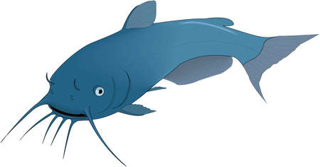 Blue mudfish illustration.