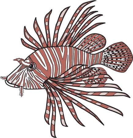 Lionfish illustration.
