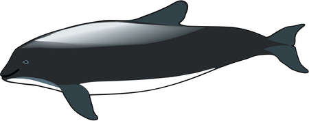 Burmeister bruinvis illustratie Stock Illustratie