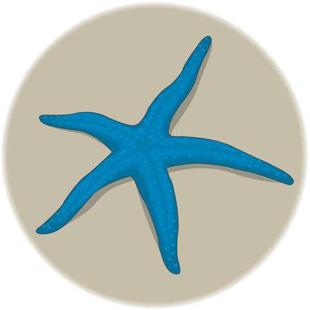 Starfish Illustration 版權商用圖片 - 83947630