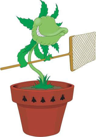 Flycatcher Cartoon