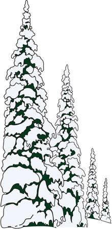 積雪のモミの木イラスト  イラスト・ベクター素材