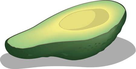 Avocado Half Illustration