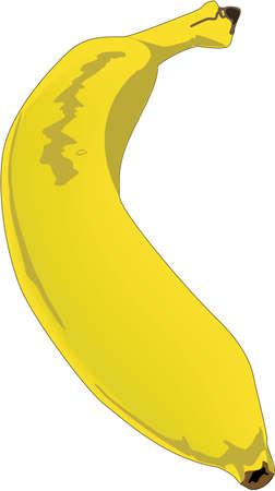 Banana Illustration Ilustrace