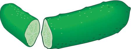 Cucumber Illustration Ilustração